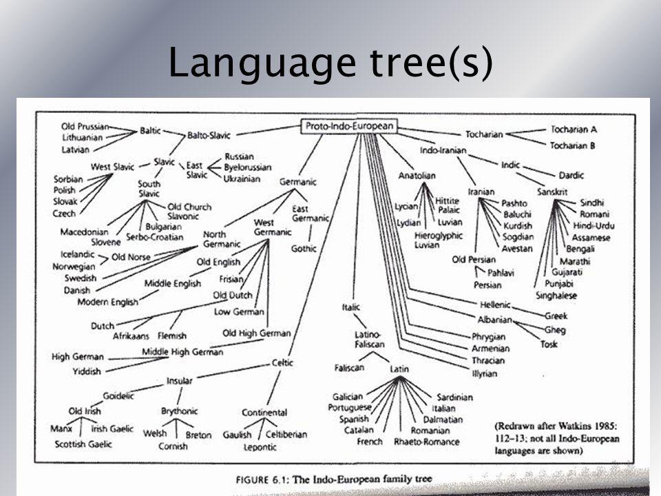 Language tree(s)