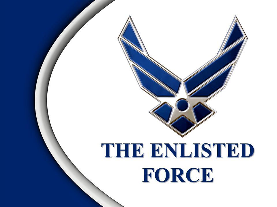 Purpose of Enlisted Force Structure Provide an Enlisted Force Structure to Best Meet Mission Requirements Defines Roles, Responsibilities and Expectations for Each Enlisted Rank Provide a Common, Stable Enlisted Career Structure
