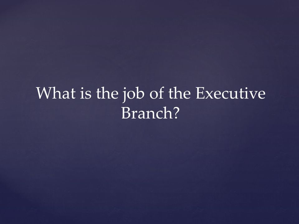 What is the job of the Executive Branch?