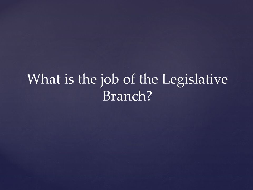 What is the job of the Legislative Branch?