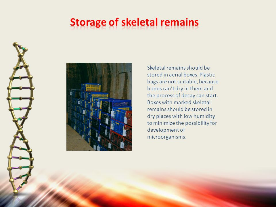 Skeletal remains should be stored in aerial boxes.