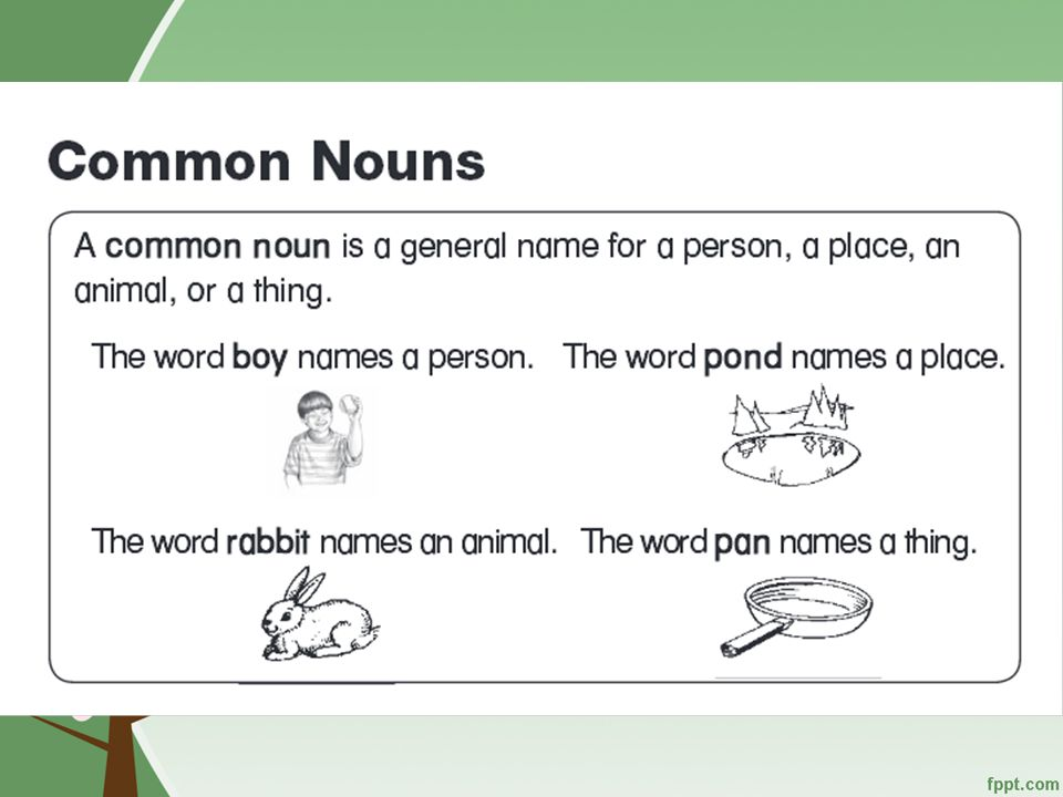 Conventions Common Nouns is a word that names a person, place, animal or thing