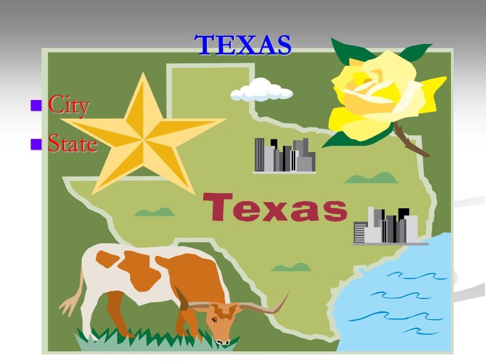 TEXAS City City State State