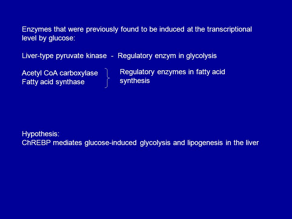 Enzymes that were previously found to be induced at the transcriptional level by glucose: Liver-type pyruvate kinase - Regulatory enzym in glycolysis Acetyl CoA carboxylase Fatty acid synthase Regulatory enzymes in fatty acid synthesis Hypothesis: ChREBP mediates glucose-induced glycolysis and lipogenesis in the liver