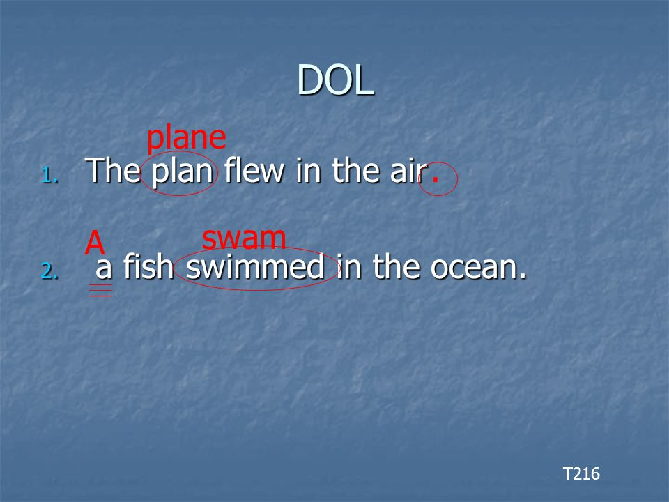 DOL 1. The plan flew in the air 2. a fish swimmed in the ocean. T216 plane. A swam