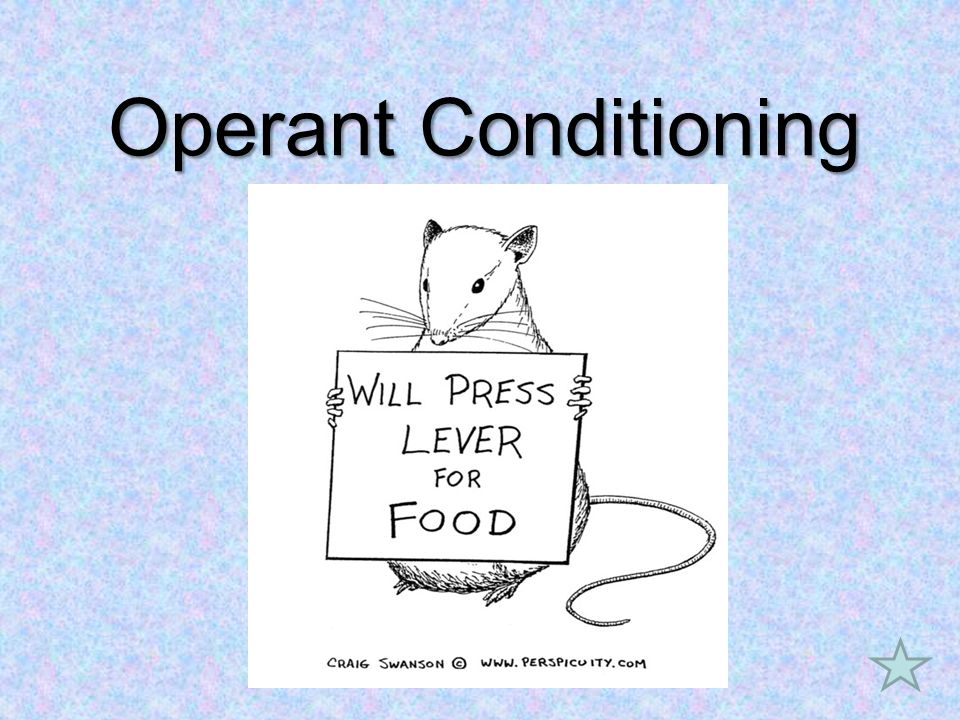 Two important concepts used in Operant Conditioning Reinforcer - (Positive and Negative)Reinforcer - (Positive and Negative) increases –A stimulus or event that increases the odds of repeating the behavior that led to it I give my kids money when they clean their room…this stimulus increases the odds they will do it again PunisherPunisher –A stimulus or event that functions to decreases the odds of repeating the behavior that lead to I spank my kids when they throw food at the dinner table…this event decreases the odds they will do it againRemember… –It is often the learner that determines if something is a reinforcement or punishment Premack Principle –This is called the Premack Principle Example: I might give Ryan broccoli after he did a chore and if he likes it he will do more chores or I might give Ryan broccoli after he did a chore and he may never do that chore again.