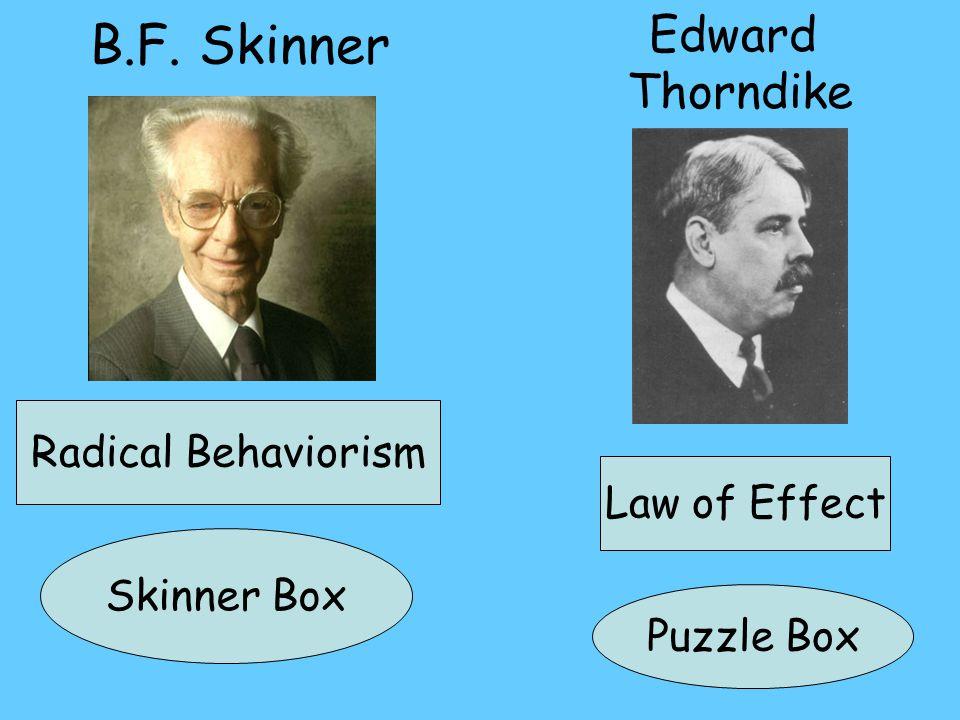 B.F. Skinner Edward Thorndike Radical Behaviorism Skinner Box Puzzle Box Law of Effect