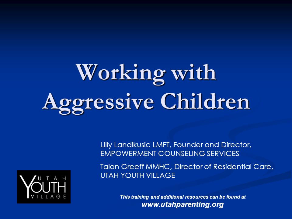 Working with Aggressive Children Lilly Landikusic LMFT, Founder and Director, EMPOWERMENT COUNSELING SERVICES Talon Greeff MMHC, Director of Residenti