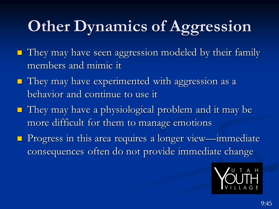 Other Dynamics of Aggression They may have seen aggression modeled by their family members and mimic it They may have seen aggression modeled by their