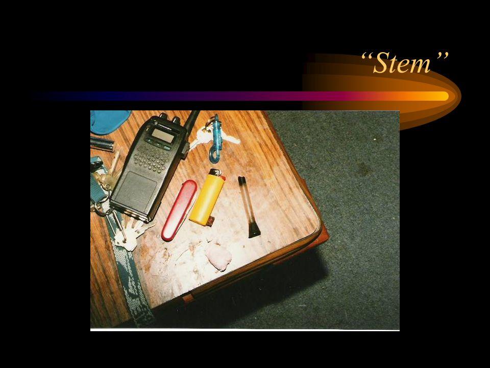 """""""Stem"""""""
