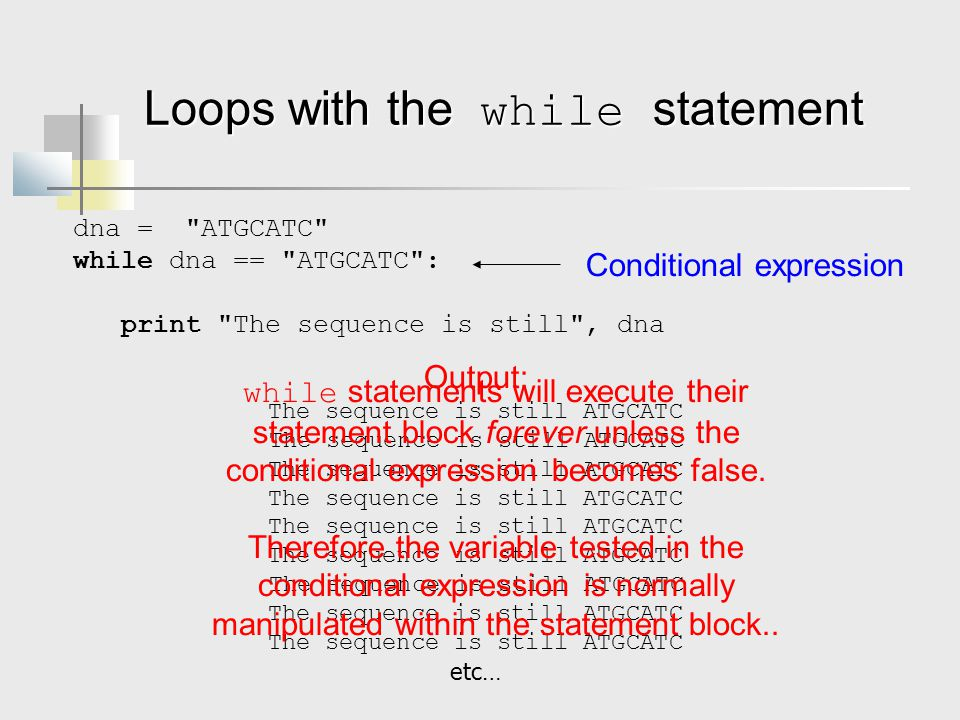 Loops with the while statement dna = ATGCATC while dna == ATGCATC : print The sequence is still , dna The sequence is still ATGCATC etc… Conditional expression Output: while statements will execute their statement block forever unless the conditional expression becomes false.
