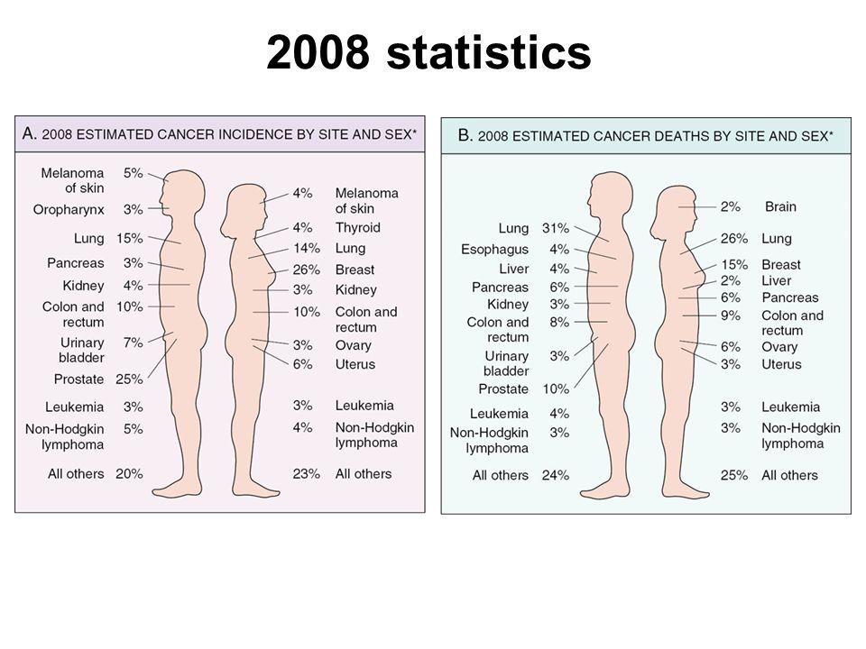 2008 statistics