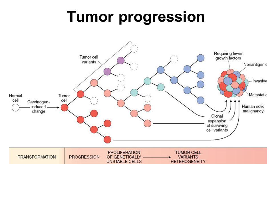 Tumor progression