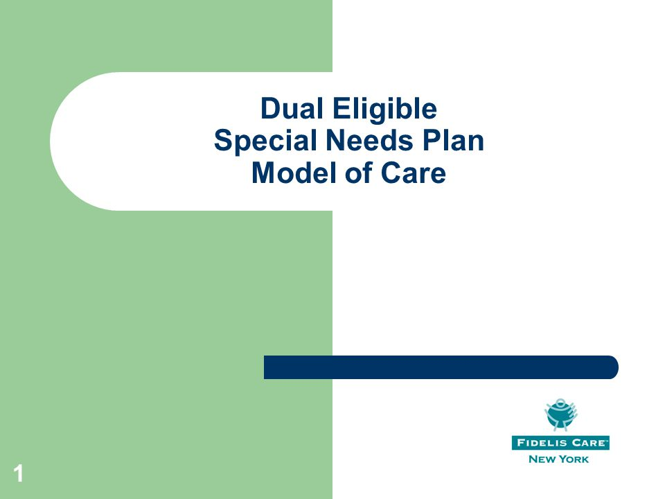 Dual Eligible Special Needs Plan Model of Care 1