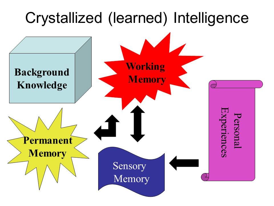 Crystallized (learned) Intelligence Permanent Memory Working Memory Sensory Memory Personal Experiences Background Knowledge