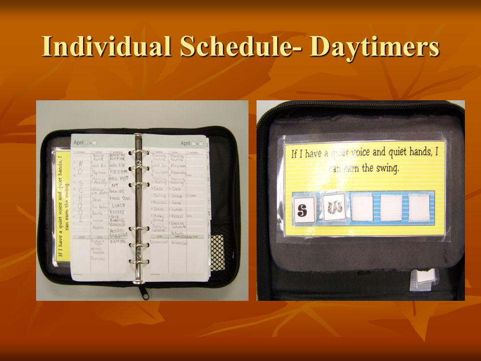 Individual Schedule- Daytimers