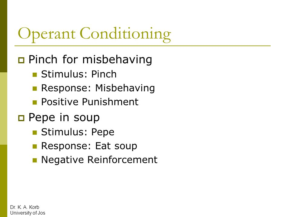 Operant Conditioning Overview  Learning Outcomes: Voluntary reactions  Role of the Learner: Passive  Role of the Instructor: Provide reinforcement and punishment as necessary  Inputs for Learning: Reinforcement and Punishment  Process of Learning: Associate reinforcement and punishment with behaviors Dr.