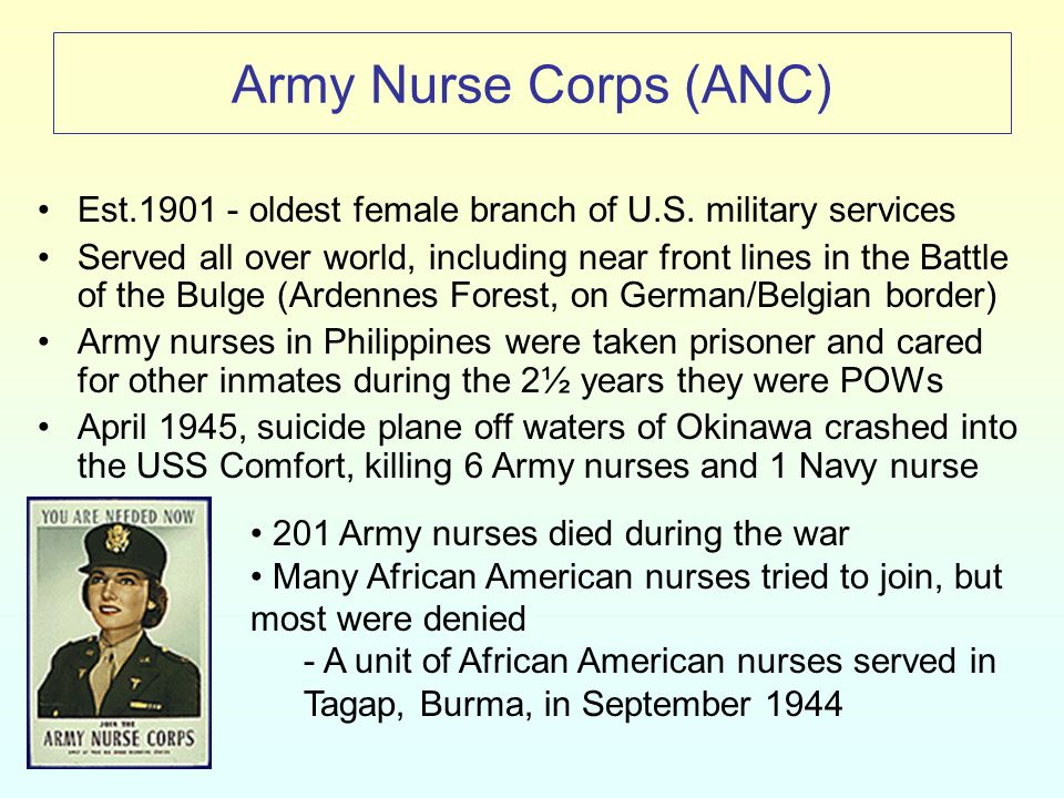Navy Nurse Corps Established in 1908 Navy nurses were at Pearl Harbor and cared for the injured after the attack 11 Navy nurses and 66 Army nurses were Japanese POWs for over 3 years Army and Navy nurses served throughout the world and suffered highest casualty rate of all military women –83 taken as POWs One day it seemed like the whole area was full of ships and the next morning there was not a single one.