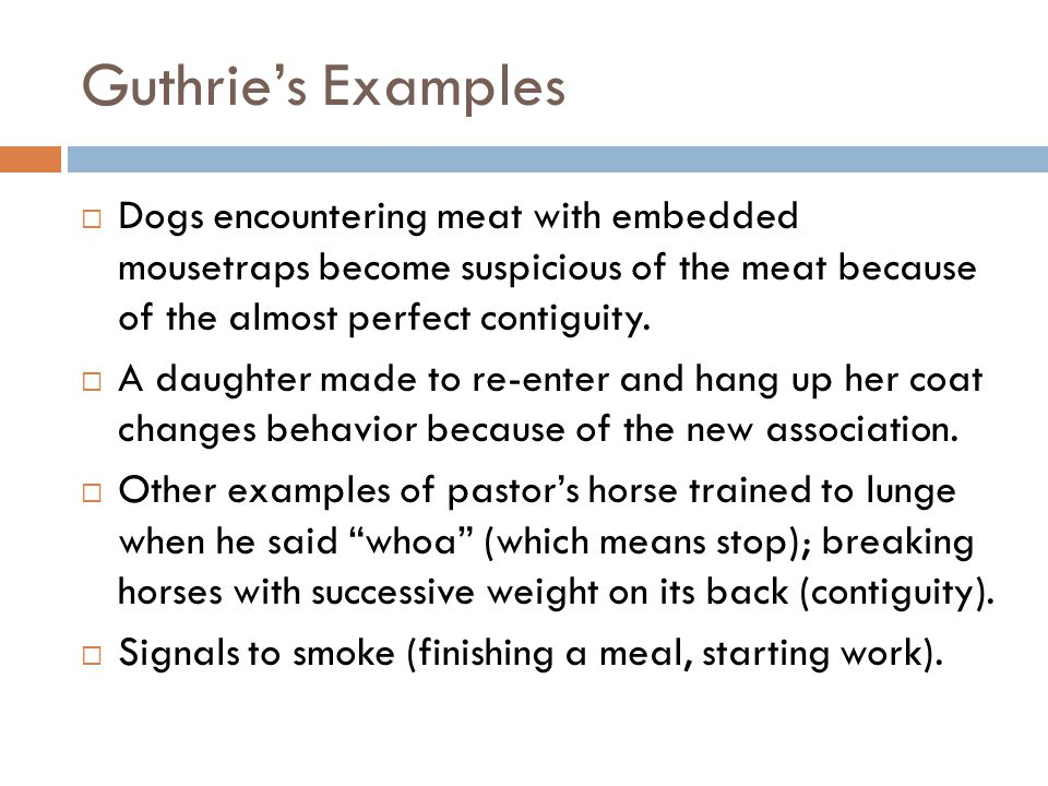 Guthrie's Examples  Dogs encountering meat with embedded mousetraps become suspicious of the meat because of the almost perfect contiguity.  A daugh