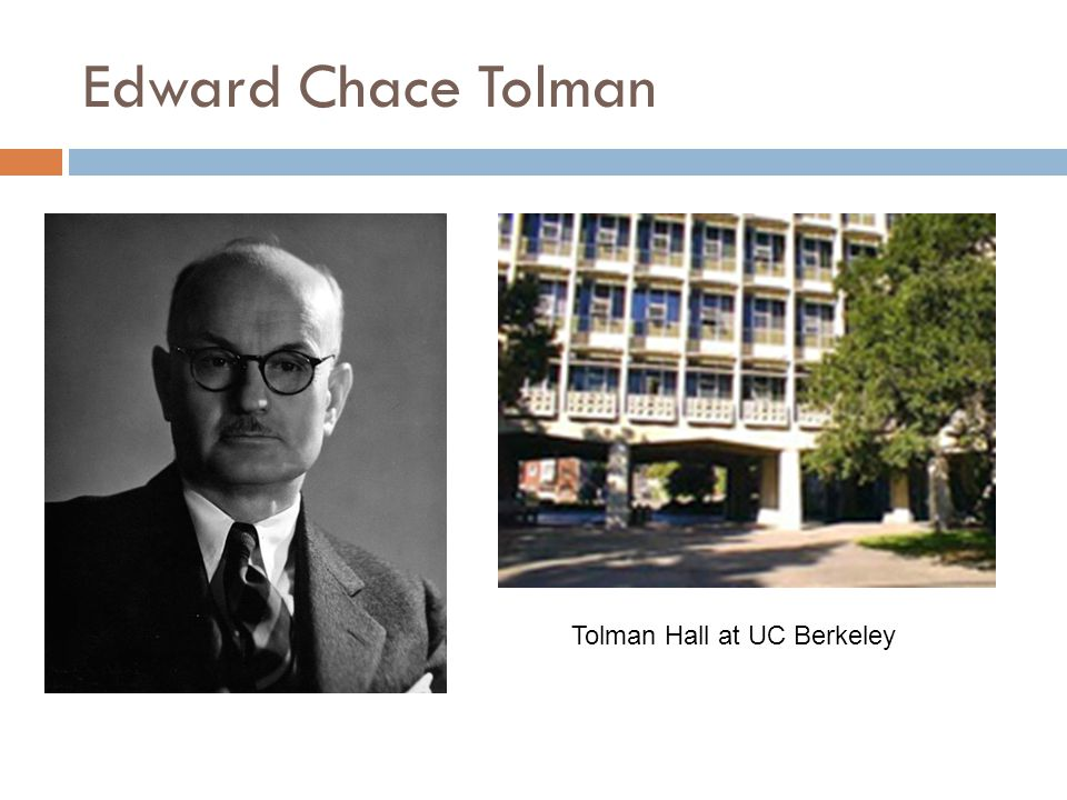 Tolman's Cognitive Behaviorism  At Berkeley, Tolman taught comparative psych using Watson's book as a text.