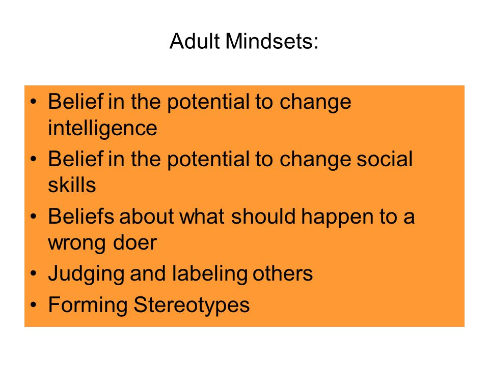 Adult Mindsets: Belief in the potential to change intelligence Belief in the potential to change social skills Beliefs about what should happen to a wrong doer Judging and labeling others Forming Stereotypes