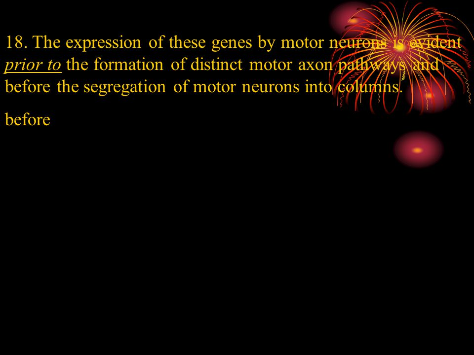 18. The expression of these genes by motor neurons is evident prior to the formation of distinct motor axon pathways and before the segregation of mot