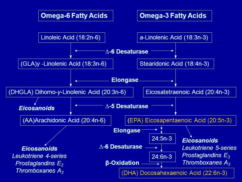 Omega-6 Fatty AcidsOmega-3 Fatty Acids Linoleic Acid (18:2n-6)a-Linolenic Acid (18:3n-3) (GLA)γ -Linolenic Acid (18:3n-6) (DHGLA) Dihomo-γ-Linolenic Acid (20:3n-6) (AA)Arachidonic Acid (20:4n-6) Eicosanoids Leukotriene 4-series Prostaglandins E 2 Thromboxanes A 2 Eicosanoids Stearidonic Acid (18:4n-3) Eicosatetraenoic Acid (20:4n-3) (EPA) Eicosapentaenoic Acid (20:5n-3) 24:5n-3 24:6n-3 (DHA) Docosahexaenoic Acid (22:6n-3) Eicosanoids Leukotriene 5-series Prostaglandins E 3 Thromboxanes A 3 ∆-6 Desaturase Elongase ∆-5 Desaturase Elongase ∆-6 Desaturase β-Oxidation