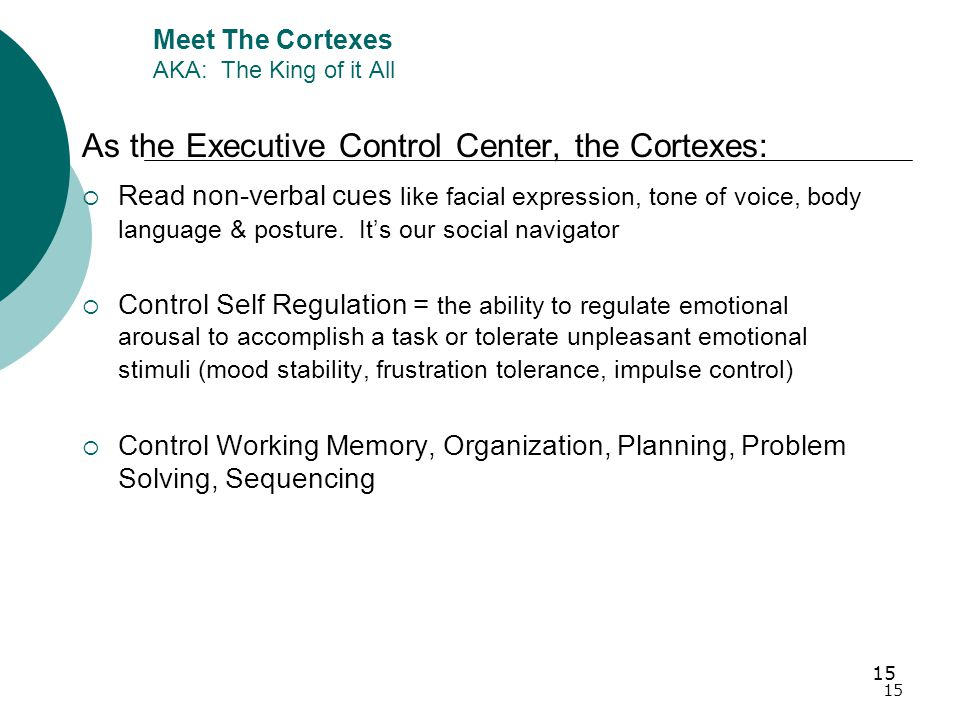 15 Meet The Cortexes AKA: The King of it All As the Executive Control Center, the Cortexes:  Read non-verbal cues like facial expression, tone of voice, body language & posture.