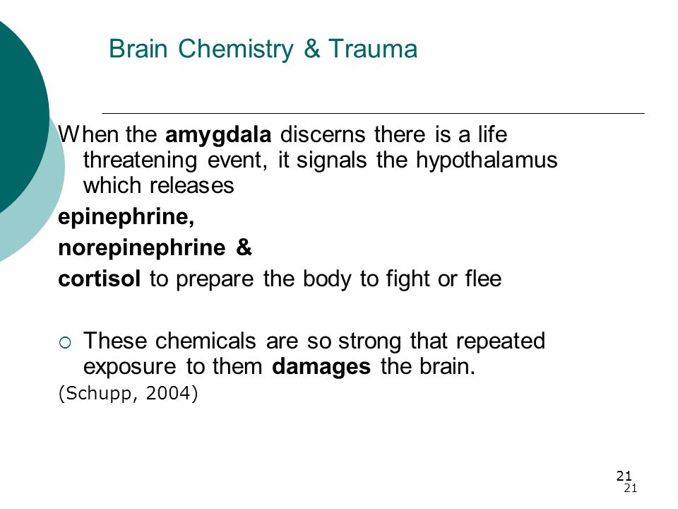 21 Brain Chemistry & Trauma When the amygdala discerns there is a life threatening event, it signals the hypothalamus which releases epinephrine, norepinephrine & cortisol to prepare the body to fight or flee  These chemicals are so strong that repeated exposure to them damages the brain.