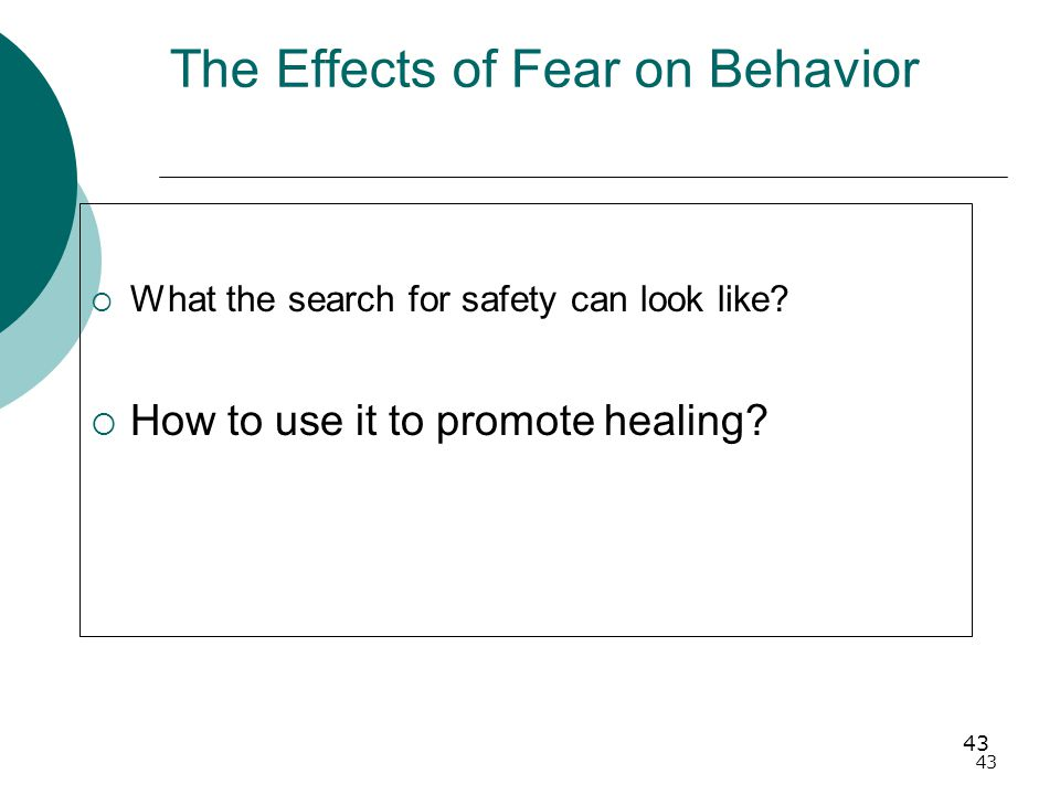 43 The Effects of Fear on Behavior  What the search for safety can look like.