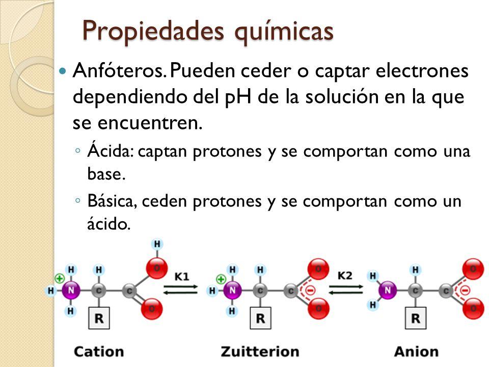 Propiedades químicas Anfóteros.