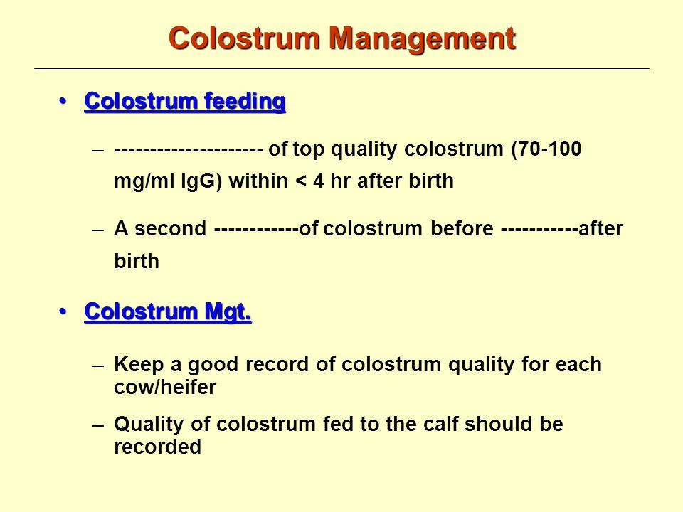 Colostrum Management Colostrum Collection Bloody colostrum and colostrum collected from a cow with ---------------- must be discharged Using colostrometer & after cooling down, check the quality (> ---------- mg/ml IgG) Extra high quality colostrum should be stored in 2 qt.