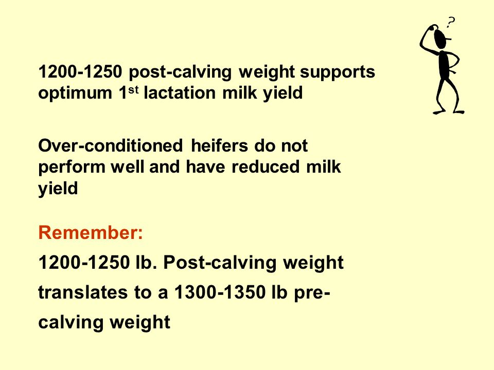 Age at calving Body size at calving The recommended goal for dairy replacement Holstein heifers: –Calving at ------------------months of age –Post-calving BW of-----------------.