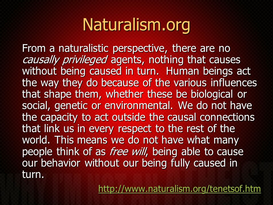 Naturalism.org From a naturalistic perspective, there are no causally privileged agents, nothing that causes without being caused in turn.