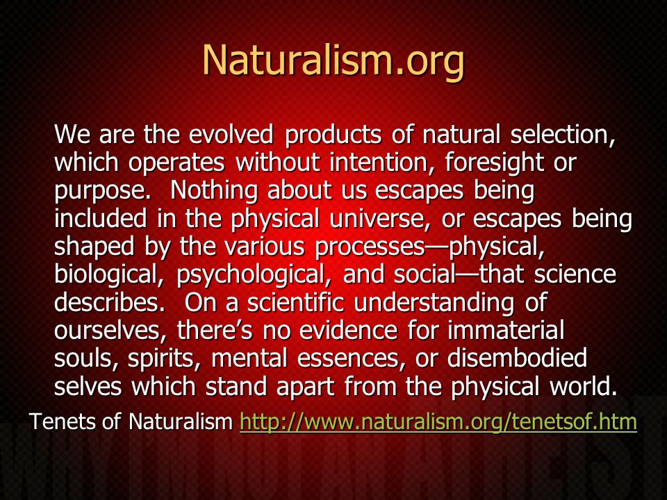 Naturalism.org We are the evolved products of natural selection, which operates without intention, foresight or purpose.