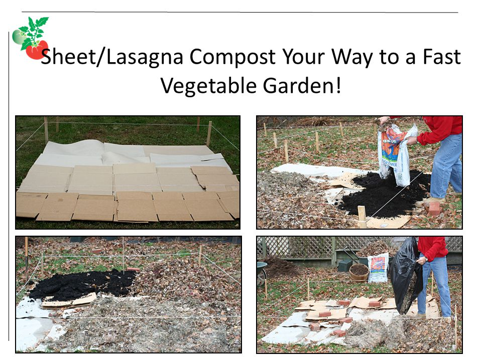 Sheet/Lasagna Compost Your Way to a Fast Vegetable Garden!