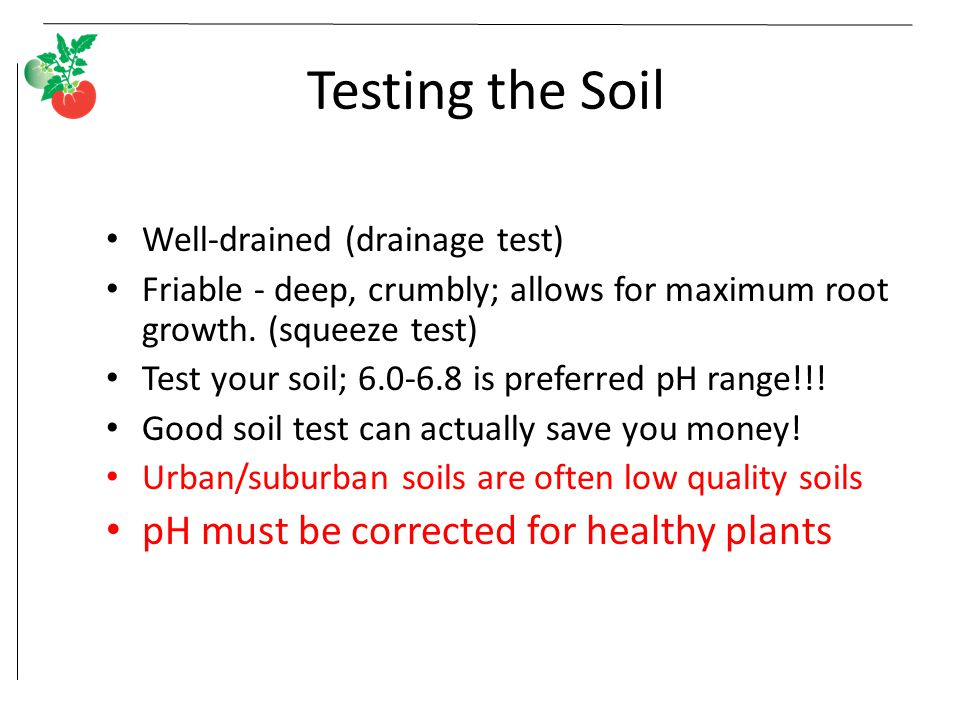Testing the Soil Well-drained (drainage test) Friable - deep, crumbly; allows for maximum root growth. (squeeze test) Test your soil; 6.0-6.8 is prefe