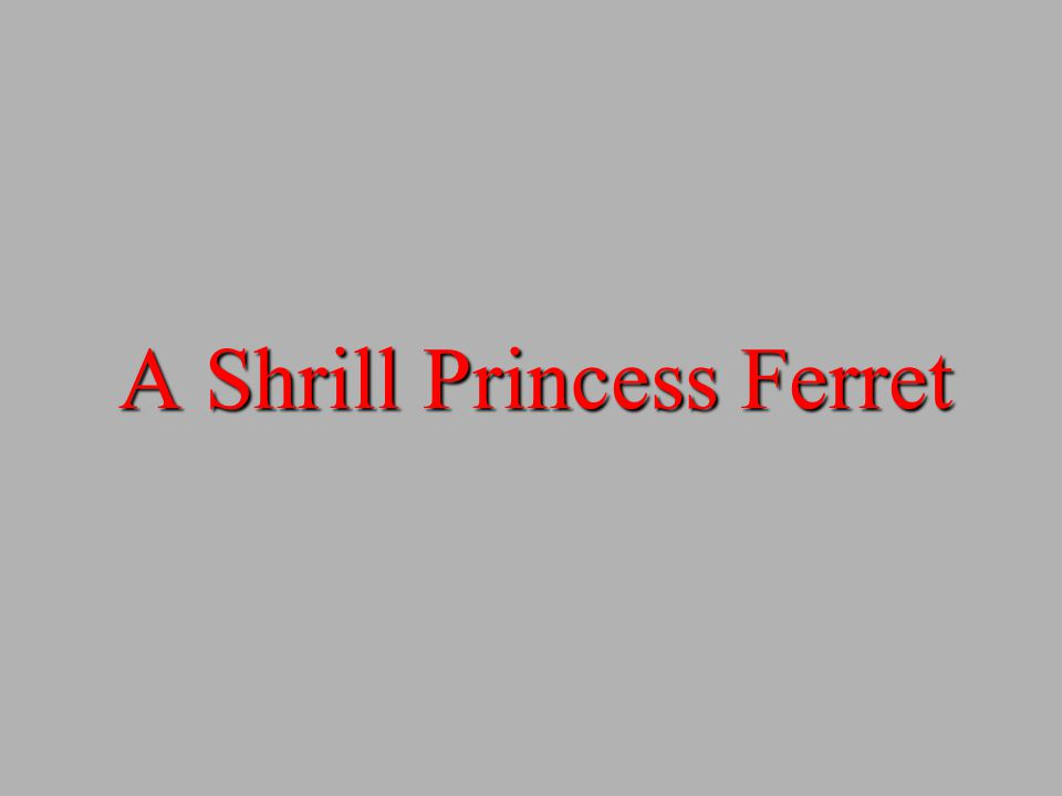 A Shrill Princess Ferret