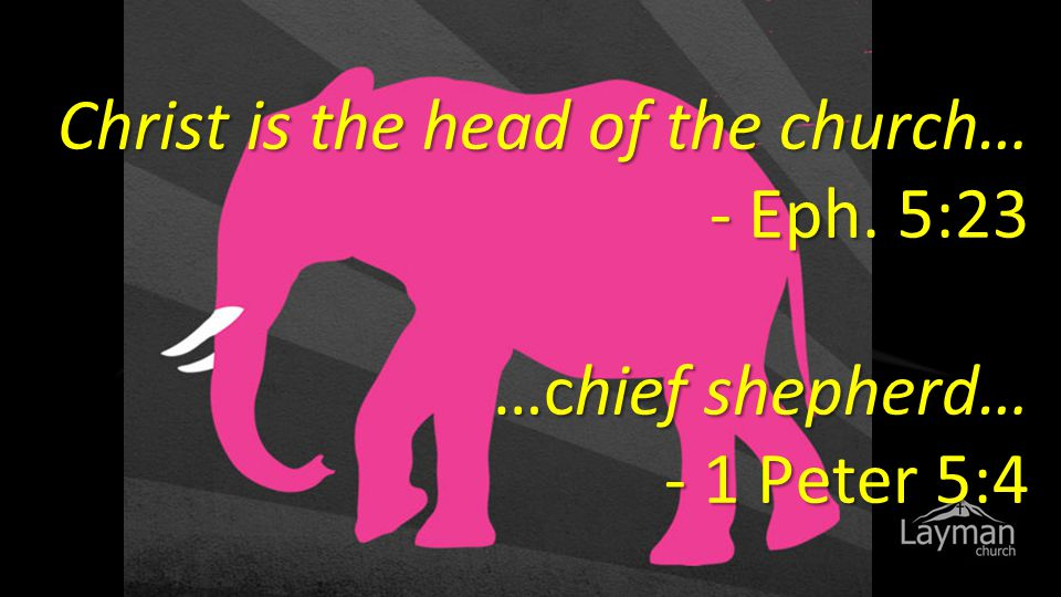 Christ is the head of the church… - Eph. 5:23 …chief shepherd… - 1 Peter 5:4