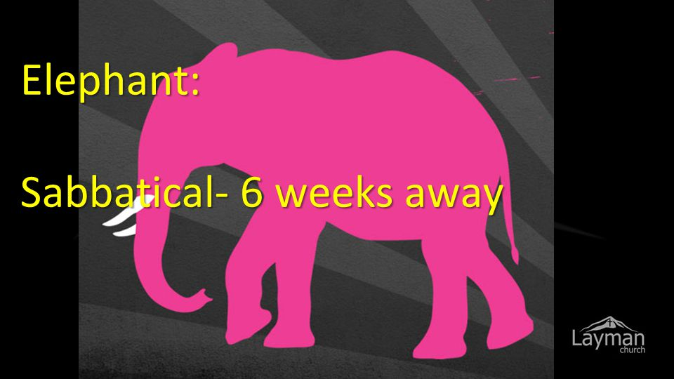 Elephant: Sabbatical- 6 weeks away