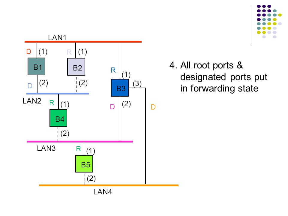 LAN1 LAN2 LAN3 B1 B2 B3 B4 B5 LAN4 (1) (2) (1) (2) (3) 4.All root ports & designated ports put in forwarding state R R R R D D D D