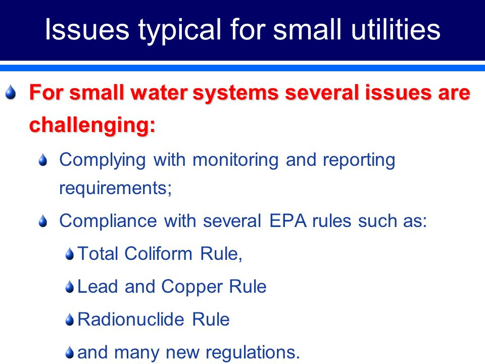 Issues typical for small utilities For small water systems several issues are challenging: Complying with monitoring and reporting requirements; Compliance with several EPA rules such as: Total Coliform Rule, Lead and Copper Rule Radionuclide Rule and many new regulations.