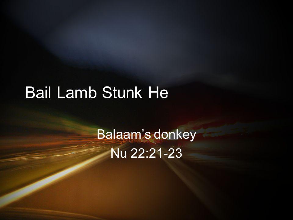 Bail Lamb Stunk He Balaam's donkey Nu 22:21-23