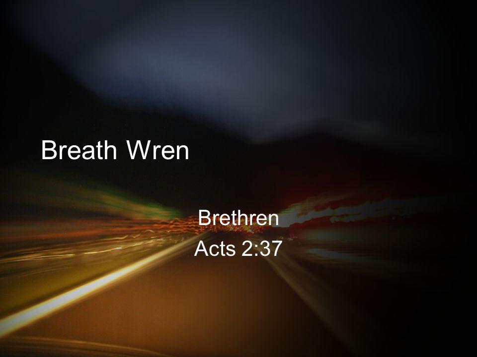 Breath Wren Brethren Acts 2:37