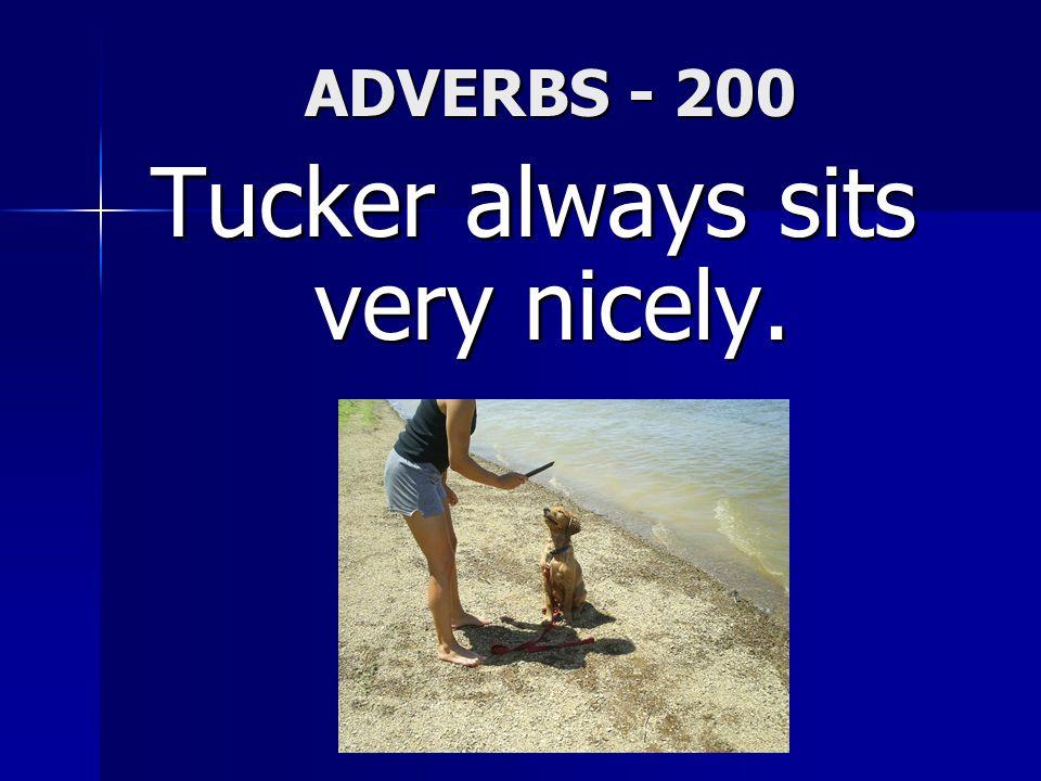 ADVERBS - 200 Tucker always sits very nicely.