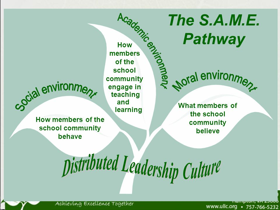 How members of the school community behave What members of the school community believe How members of the school community engage in teaching and lea