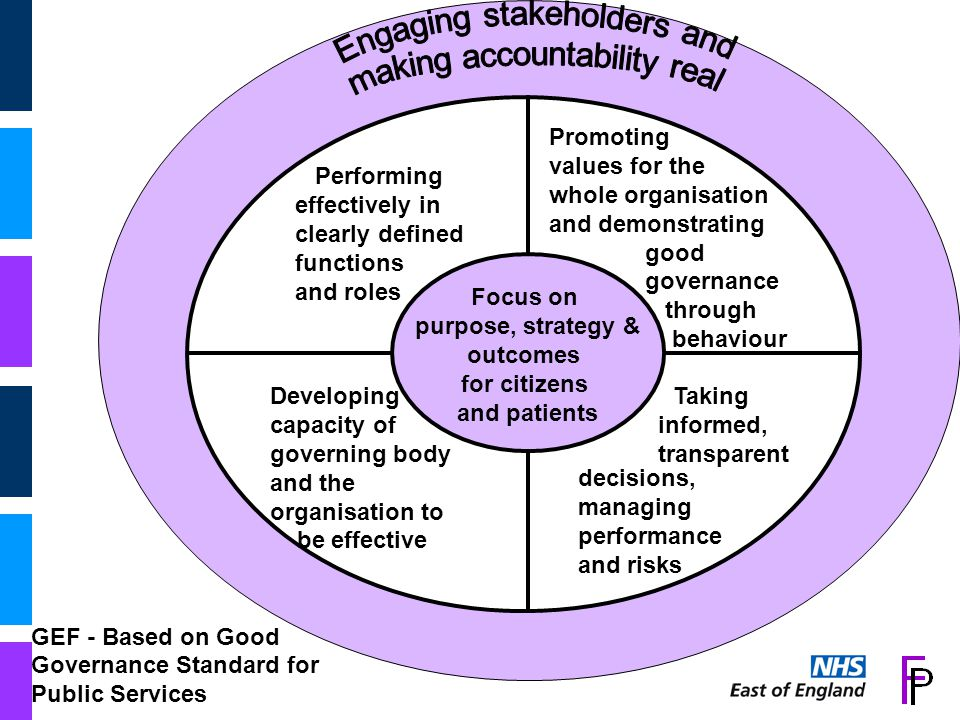 Performing effectively in clearly defined functions and roles Focus on purpose, strategy & outcomes for citizens and patients Performing effectively in clearly defined functions and roles Promoting values for the whole organisation and demonstrating good governance through behaviour Taking informed, transparent decisions, managing performance and risks Developing capacity of governing body and the organisation to be effective GEF - Based on Good Governance Standard for Public Services