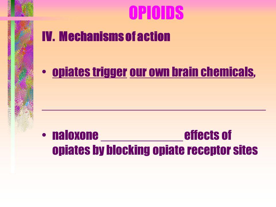 OPIOIDS V.