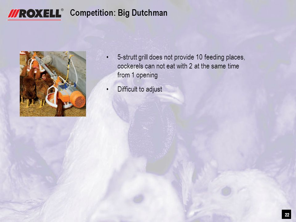22 Competition: Big Dutchman 5-strutt grill does not provide 10 feeding places, cockerels can not eat with 2 at the same time from 1 opening Difficult