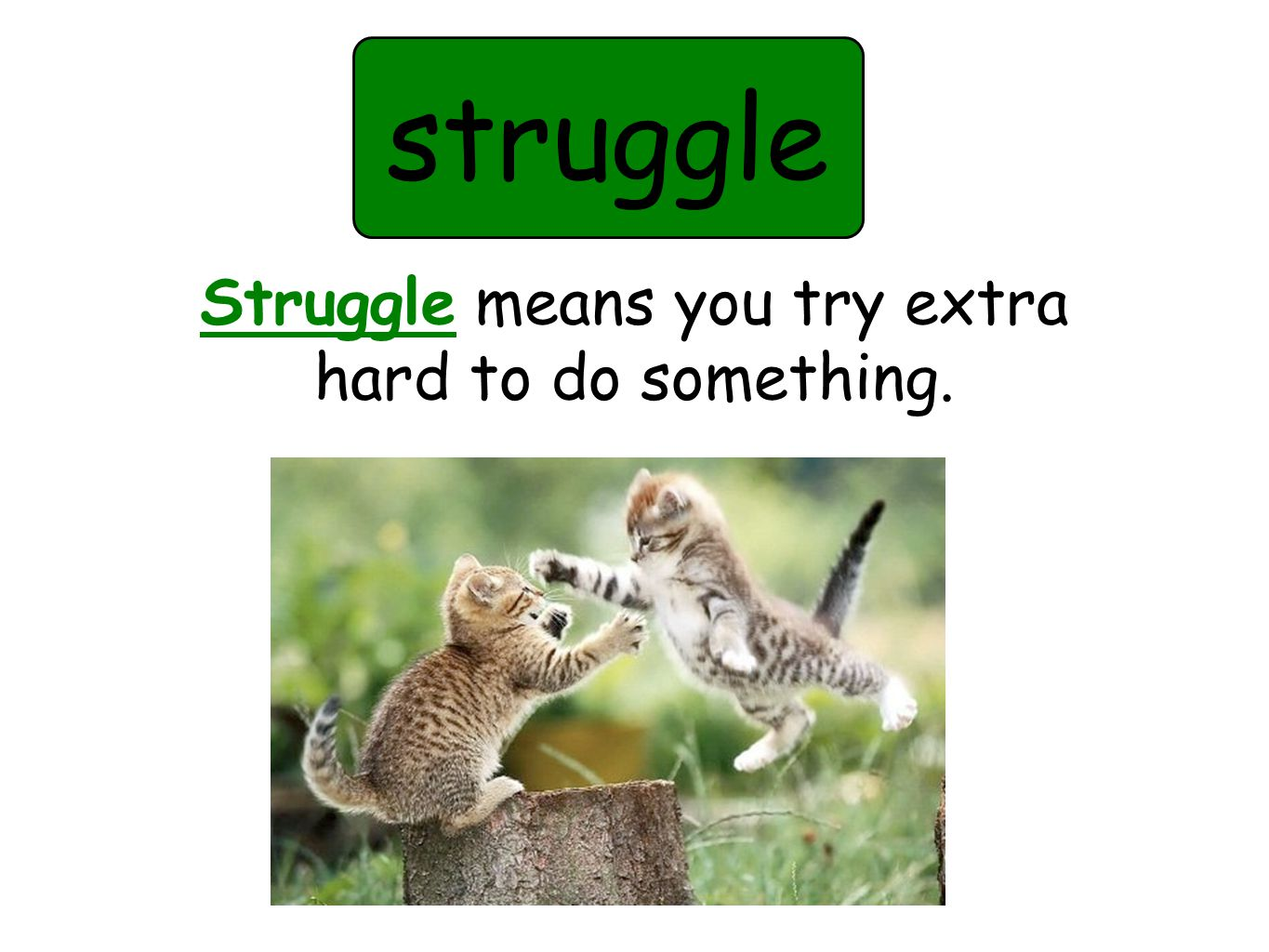 struggle Struggle means you try extra hard to do something.